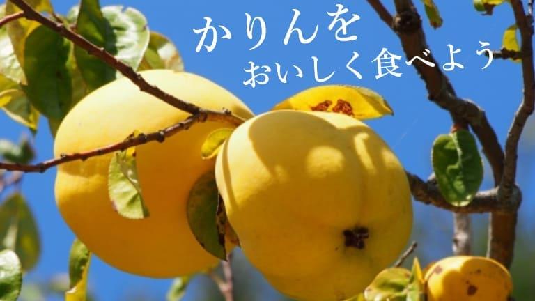 レシピ 花梨