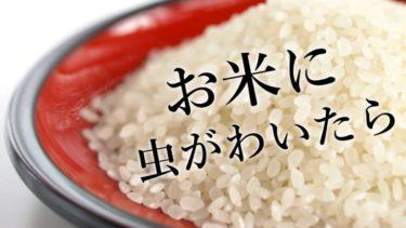 お米に虫が湧いたらどうする?食べれる?駆除と対策について
