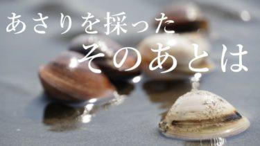 潮干狩りの持ち帰り方と保存方法まとめ!採ったあさりを新鮮に家まで運ぼう