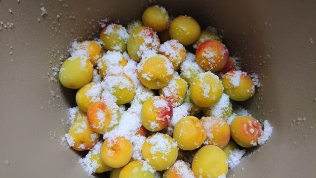 doyouboshinoyarikata6 梅干しの干さない作り方!梅干しじゃなくて梅漬けを作ろう