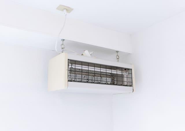 madonimusi5 窓に虫が来ない方法!虫が窓に寄って来る全ての原因を排除できるフルコースとは