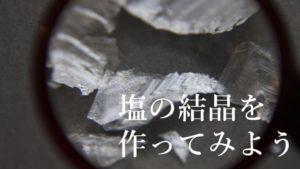 塩の結晶の作り方!自由研究で最大評価を得るための実験アリ!