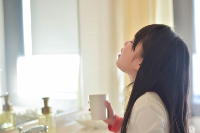 umezu4 白梅酢と赤梅酢の使い方をそれぞれ解説!どのように使い分ける?