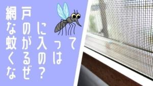 蚊は網戸をすり抜ける?網戸を閉めてるのに蚊が入ってくる原因と対処法
