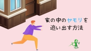 ヤモリが家に入ったら!追い出し方や逃がし方、家に入らないようにする対策を解説
